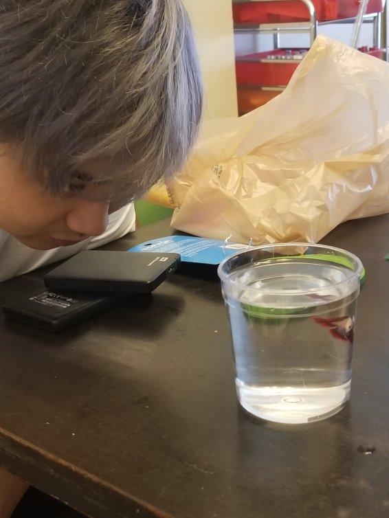 Andy carefully inspect Felix